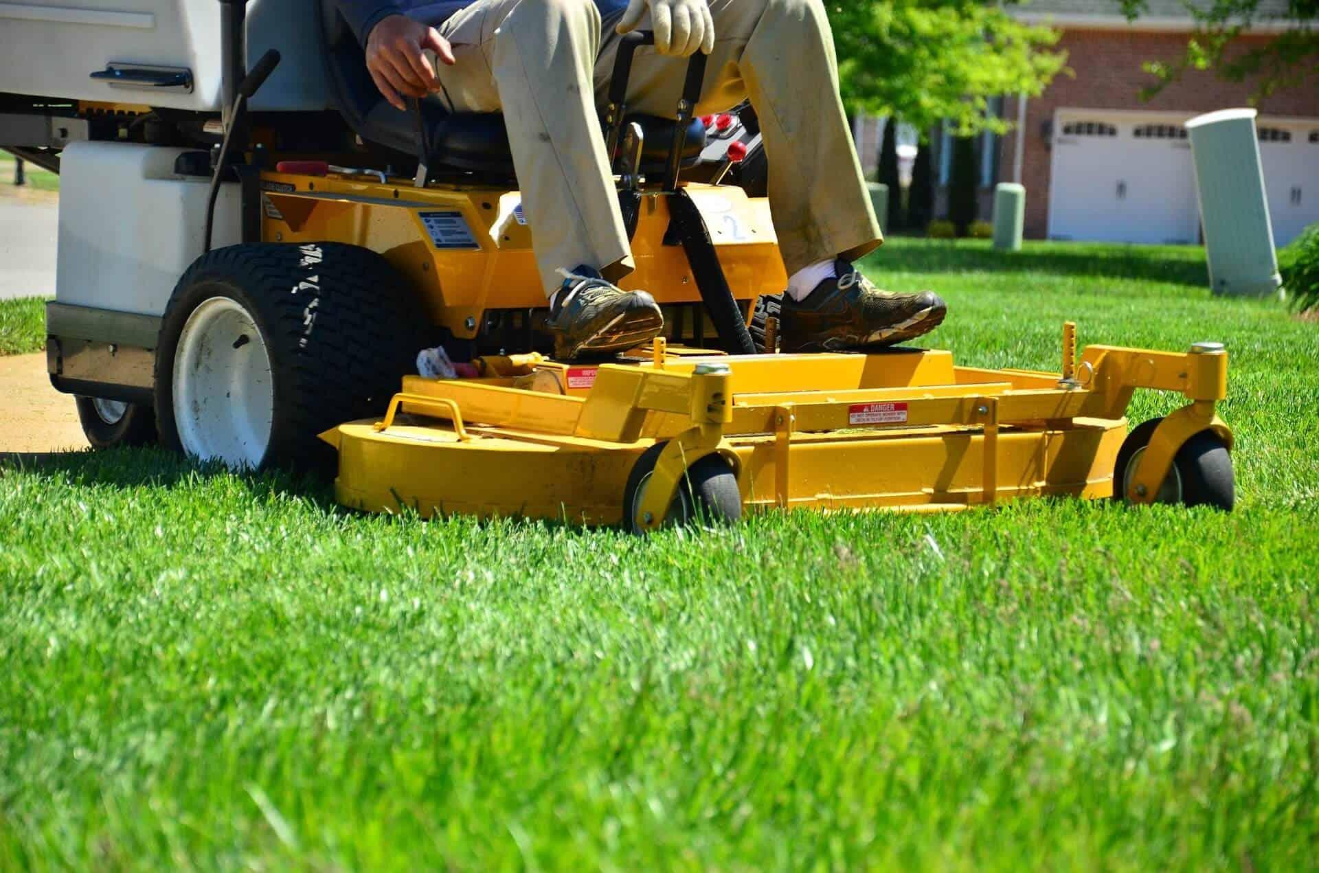 lawn-care-643559_1920